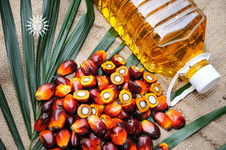 olio-di-palma-raffinato