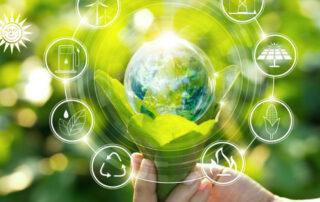 certificazioni-volontarie-sostenibilità
